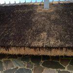 põlevast materjalist katus (16)
